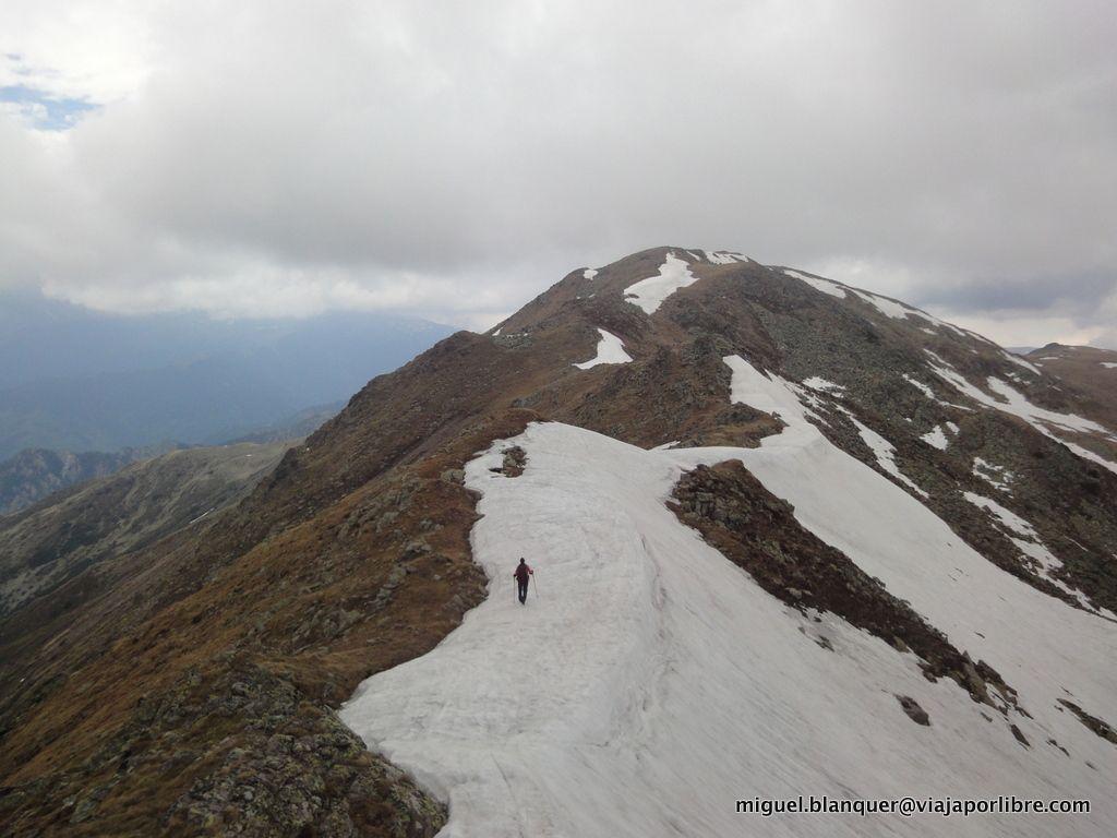 Monte Rosu
