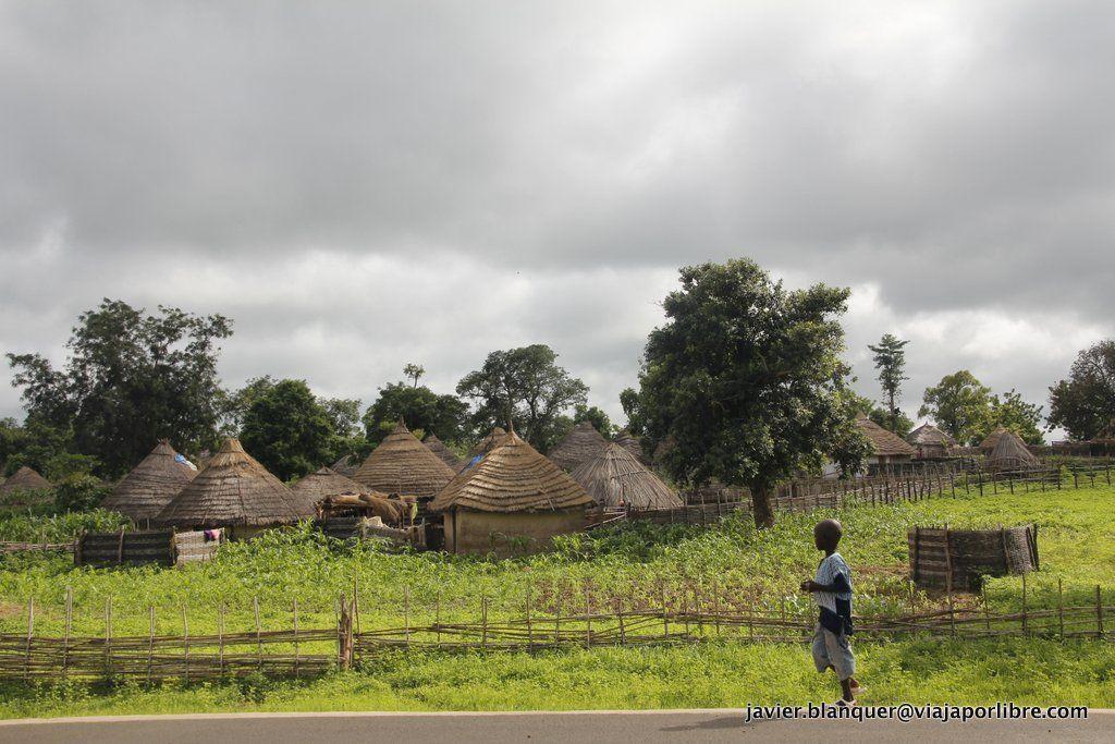 Alrededores de Niokolo Koba