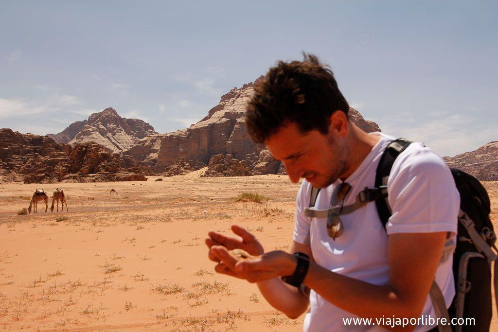 Javier Blanquer en Wadi Rum
