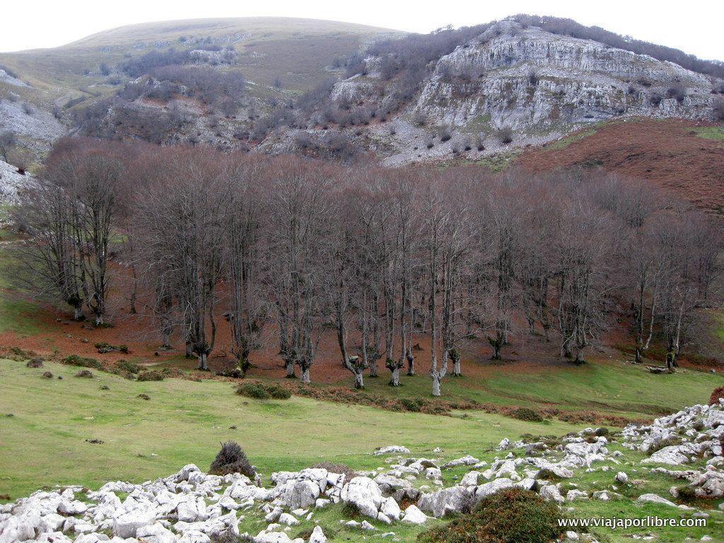 Monte Gorbeia