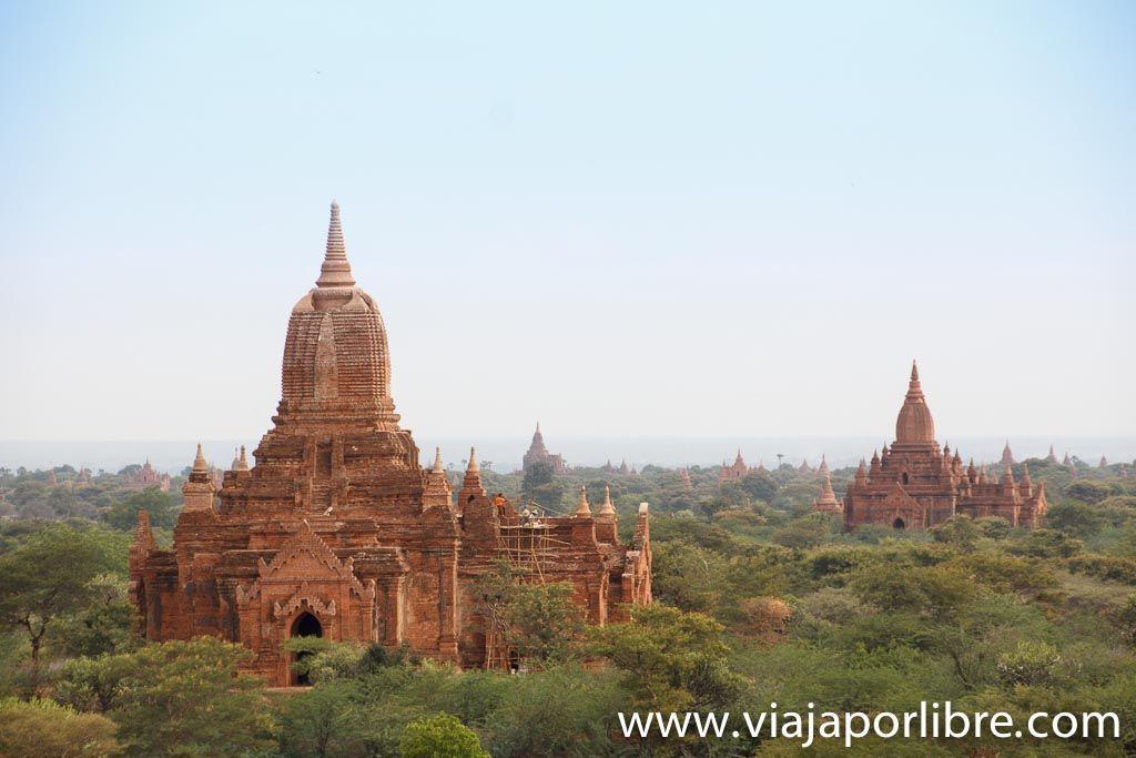 Desde la Dhamma Yan Zi Ka Pagoda