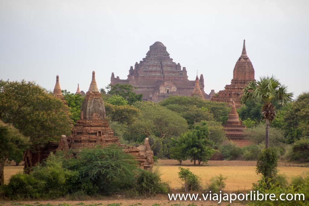 Dhammayangyi, Bagan