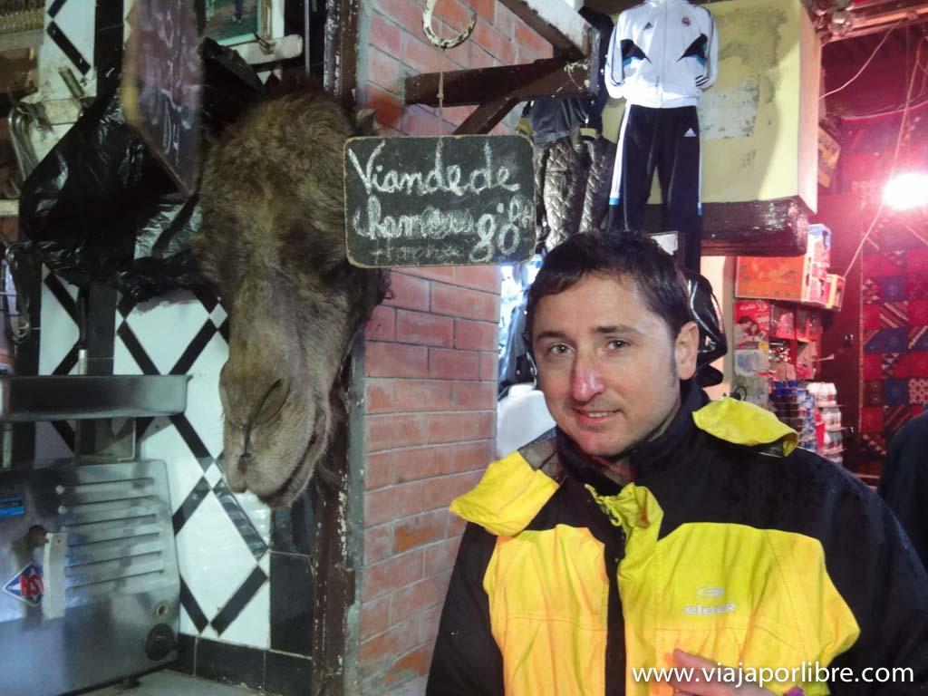 Una cabeza de camello en Marrakech