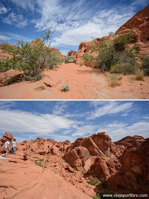 Valley of Fire - Mouse Tank Trail