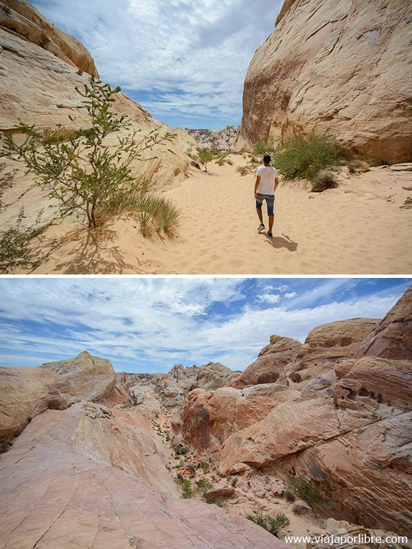 White Domes Loop - Valley of Fire