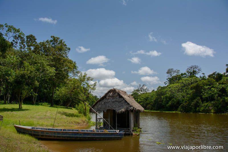 Viajar al Amazonas peruano - Muyuna Lodge