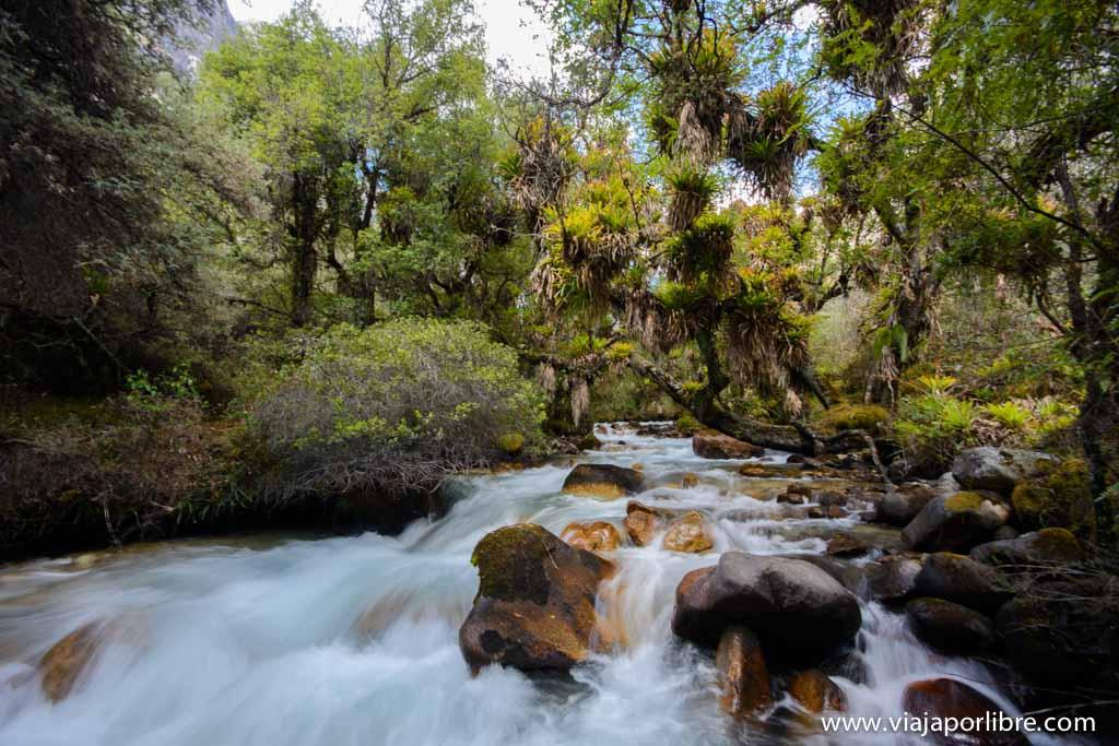 Lagunas de Llanganuco