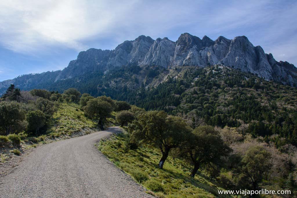 El Torreón - Sierra de Cádiz