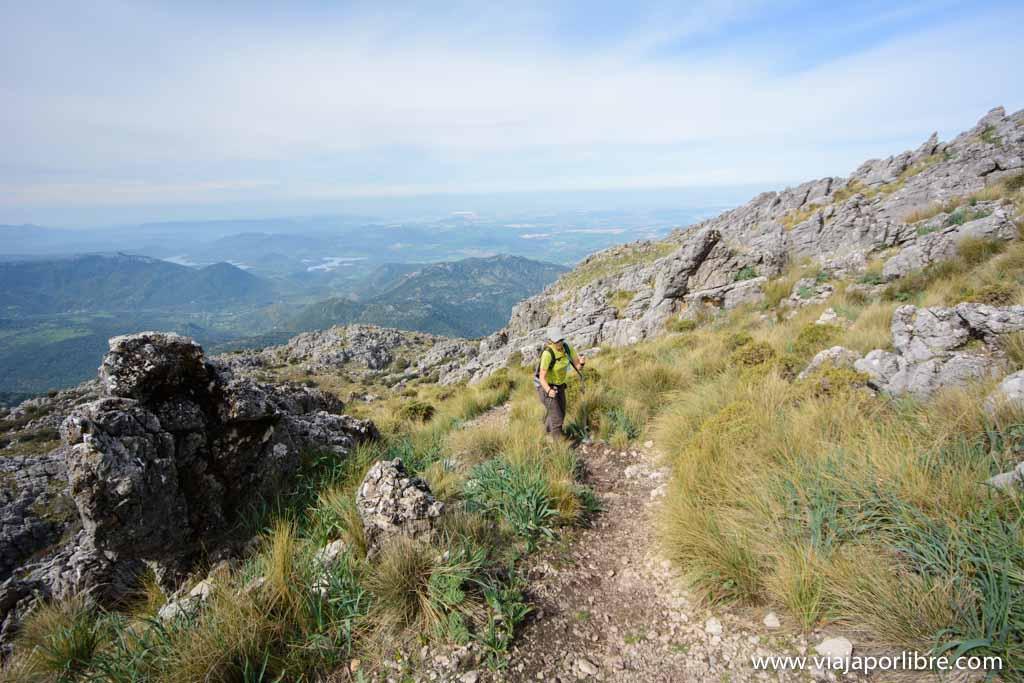 Pico el Torreón - Cádiz