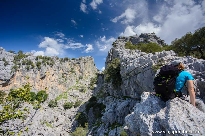 Salto del cabrero - Sierra de Cádiz