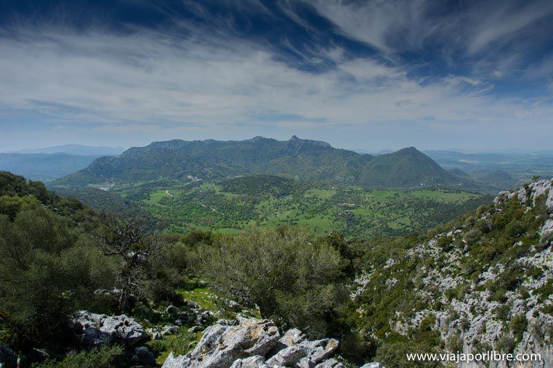 Pico del Adrión