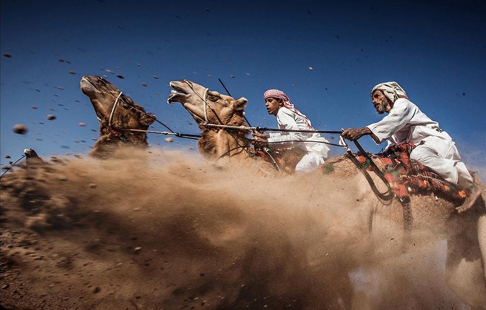 Carrera de Camellos al estilo Ardah - Autor : Ahmed Al Toqi