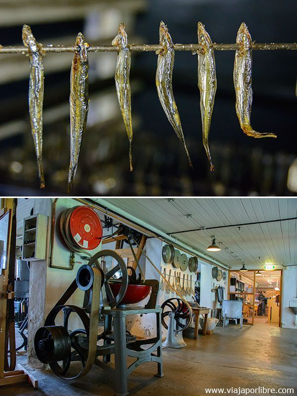 Qué ver en Stavanger - Museo de la Sardina