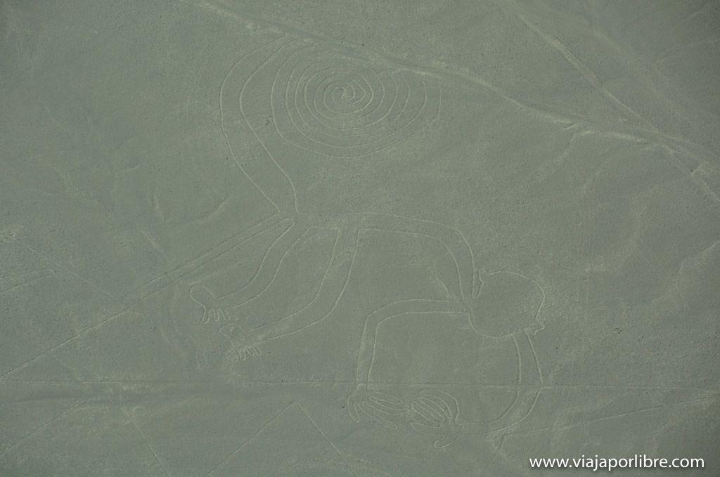 El mono - Líneas de Nazca del Perú