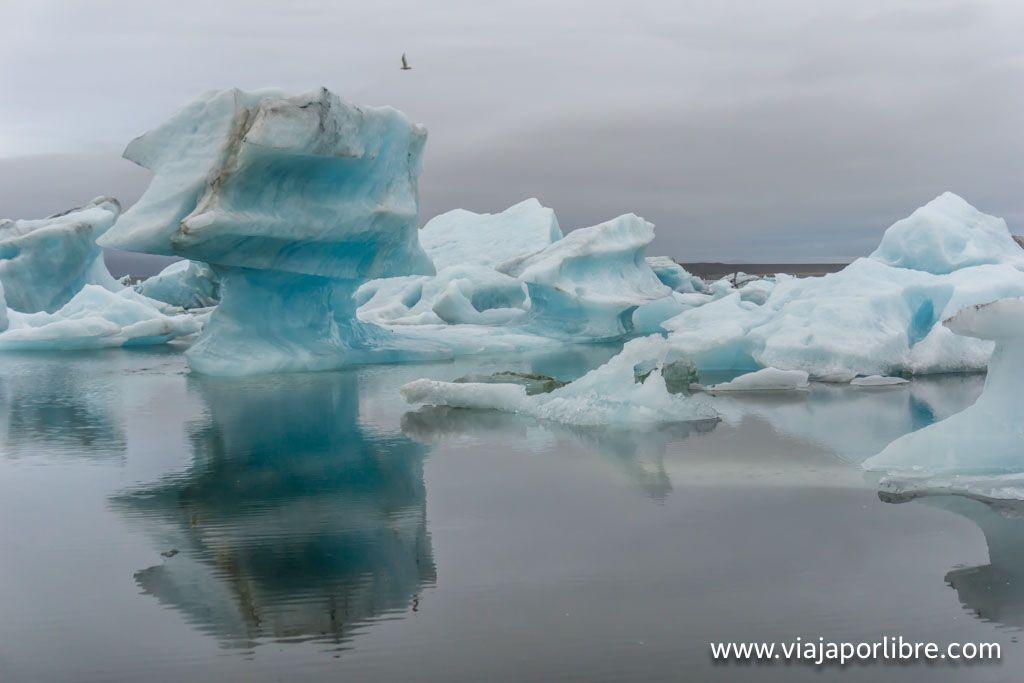 Jökulsárlón y bloques de icebergs