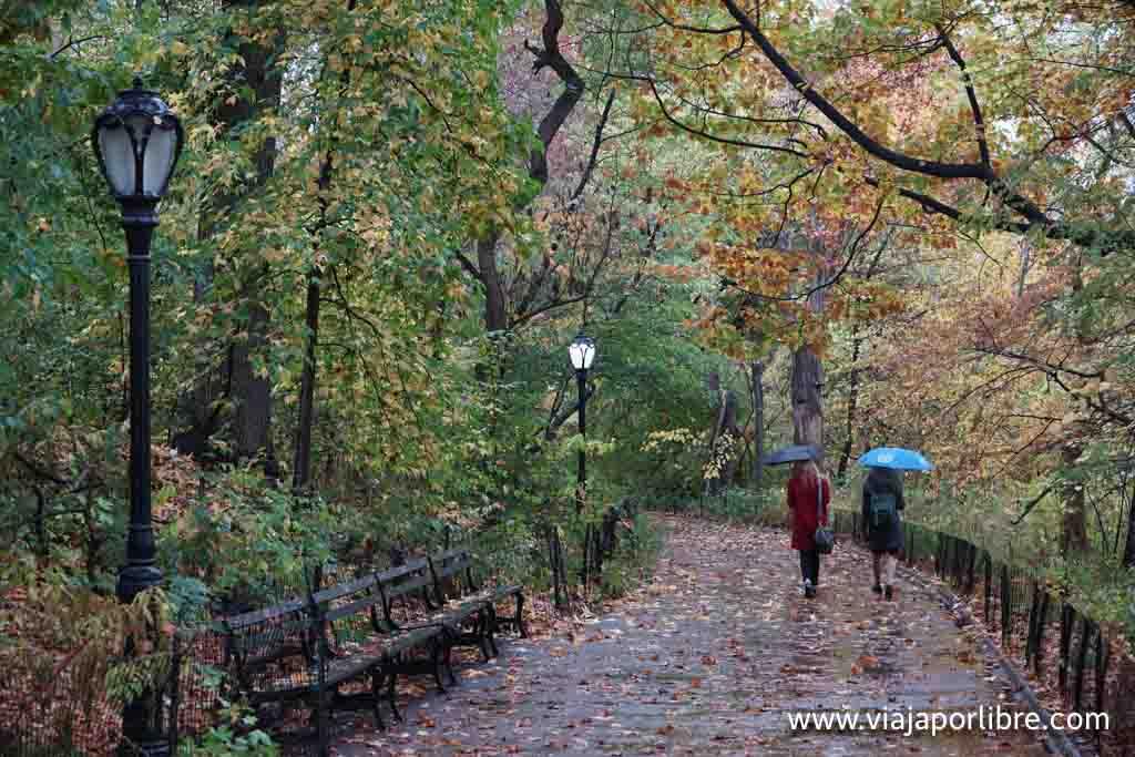 Central Park bajo la lluvia