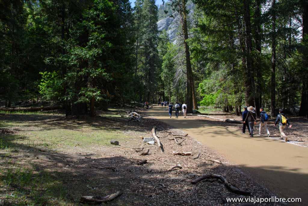 Trekking en Yosemite National Park