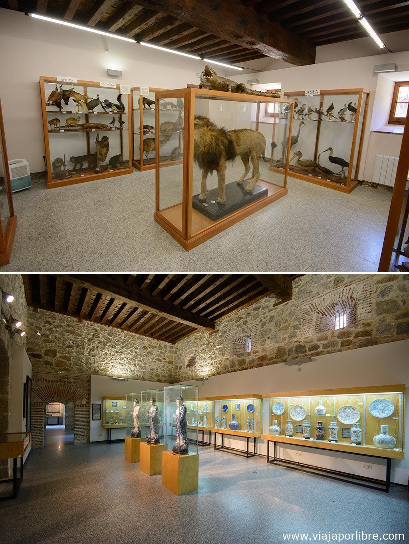 Monasterio de Santo Tomás - Museos