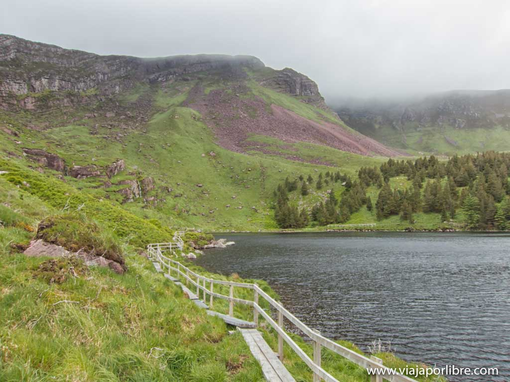 El bosque de Glanteenassig. Trekking en Irlanda
