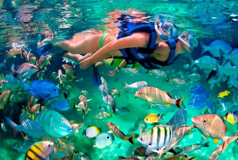 Snorkel en Xelha
