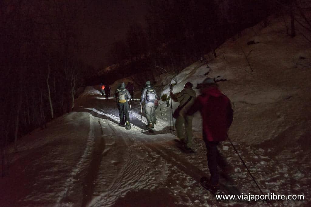Ruta con raquetas de nieve en Narvik