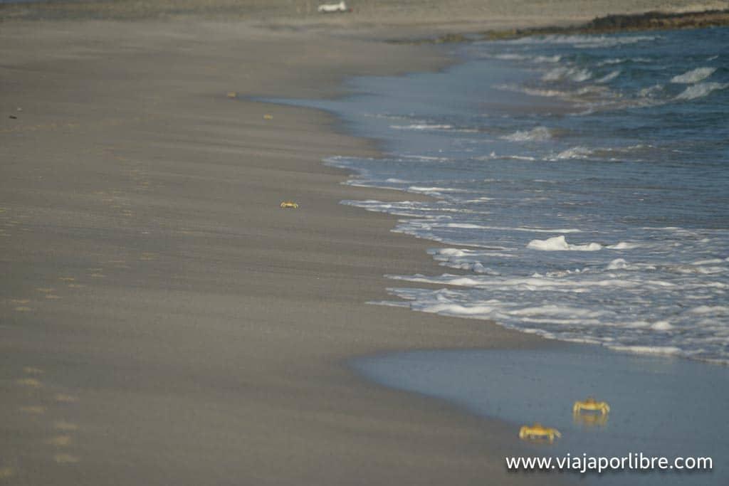Playas en Omán