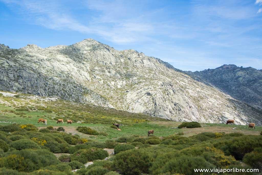 Ascensión al alto de la Hoya, las mejores vistas de la sierra de la Paramera