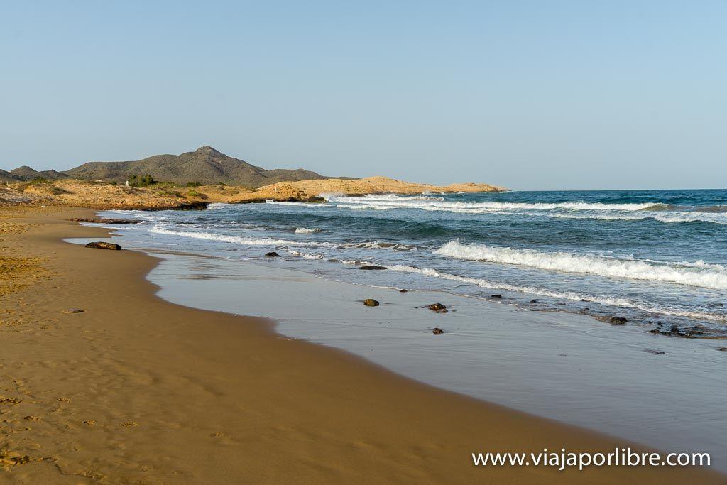 Playa las Cañas