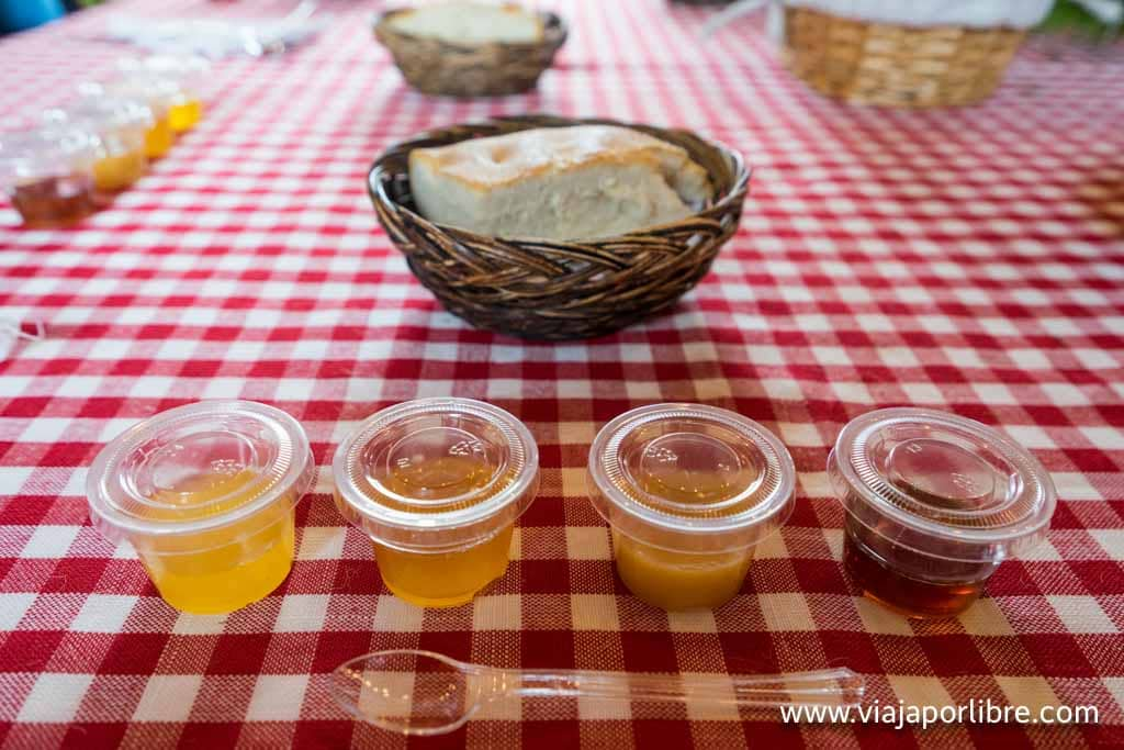 Cata de miel