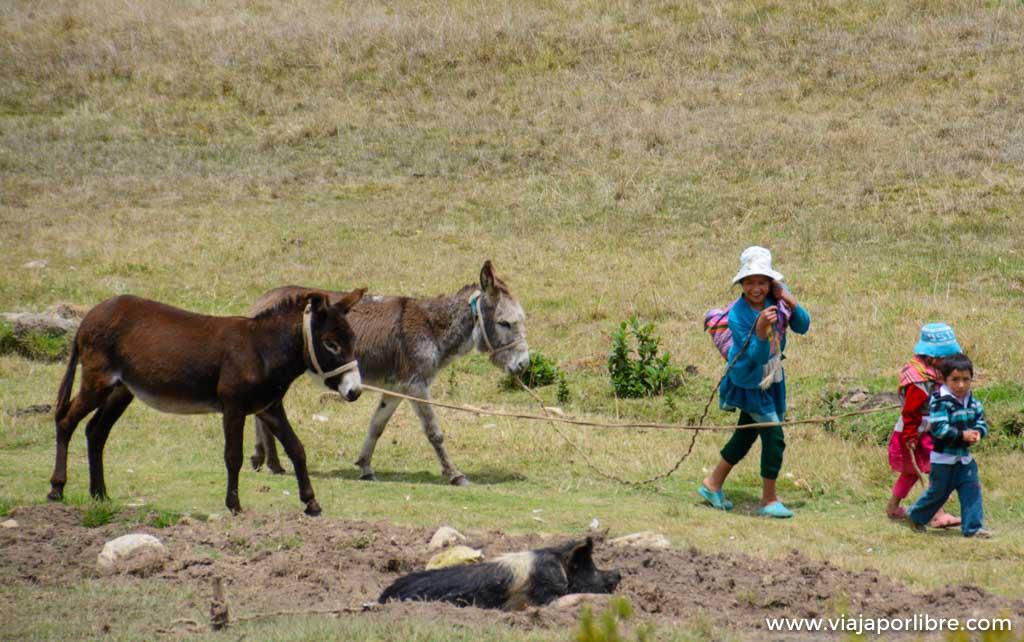 Turismo vivencial en Perú