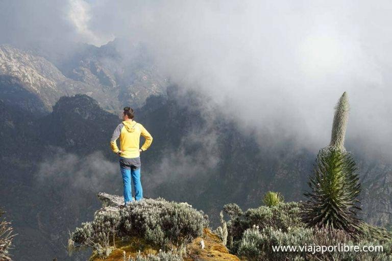 Rwenzori - Montañas de la Luna