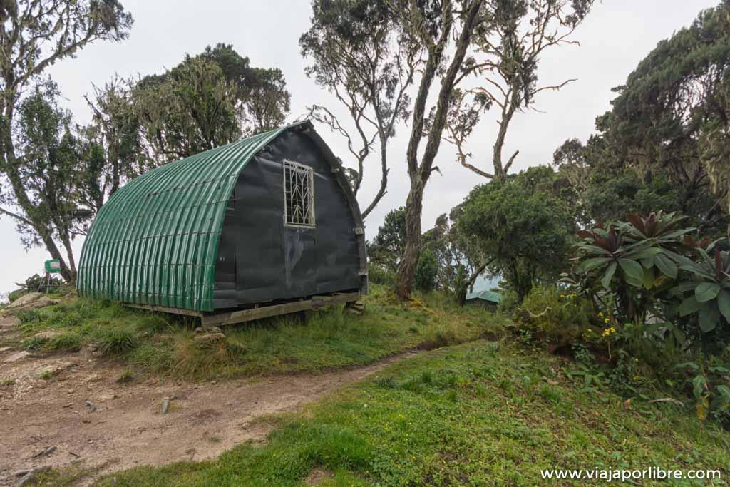 Rwenzori – Etapa 2. Desde el refugio Sine Hut a Mutinda