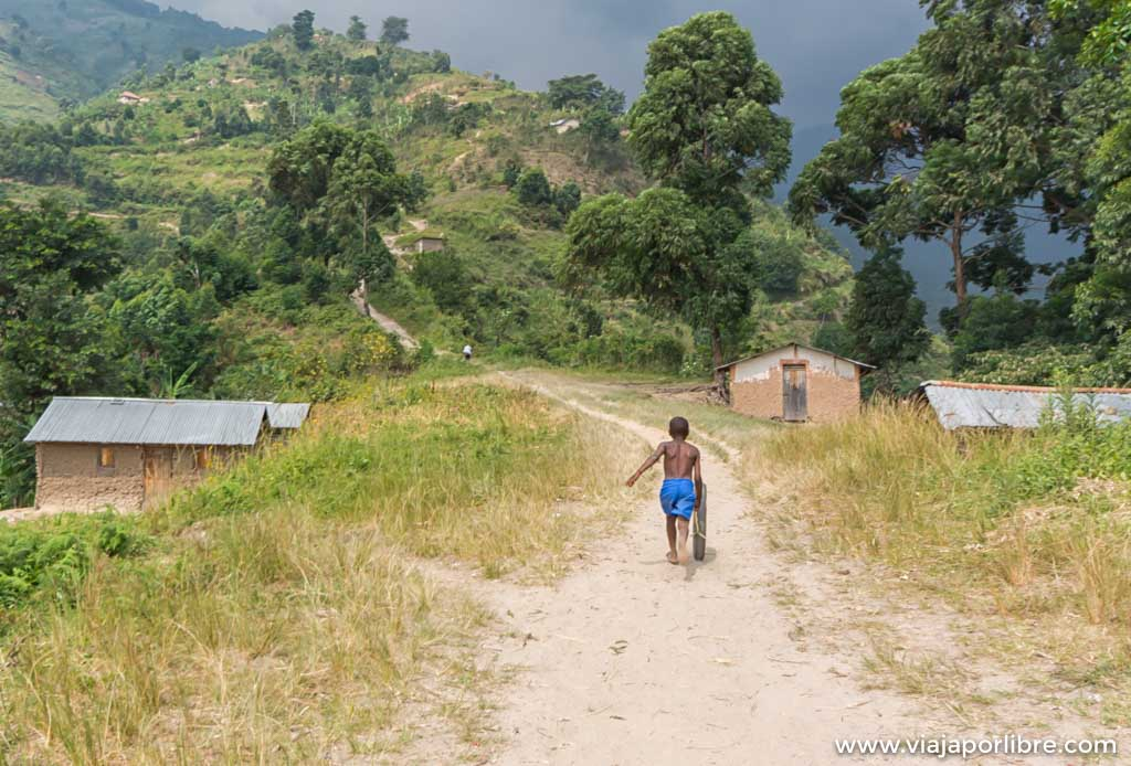 Rwenzori Etapa 1. (Kilembe - Sine Hut)