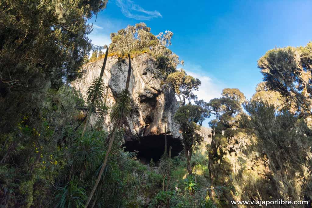 Rwenzori - Etapa 3. Mutinda Hut a Bugata camp