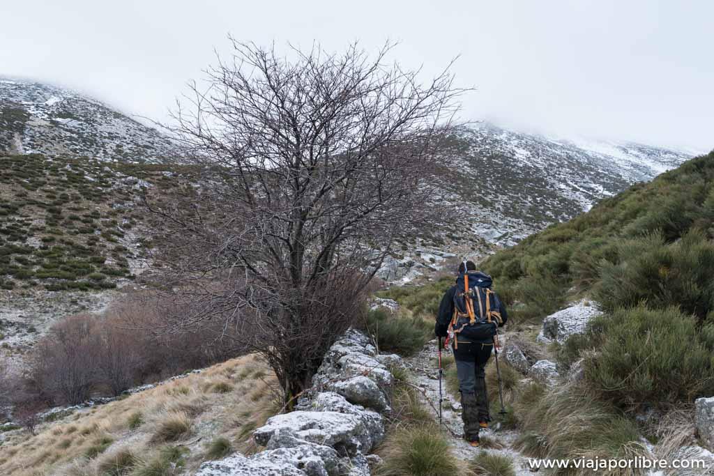 Ruta invernal al Cabezo, Gredos (Circular)