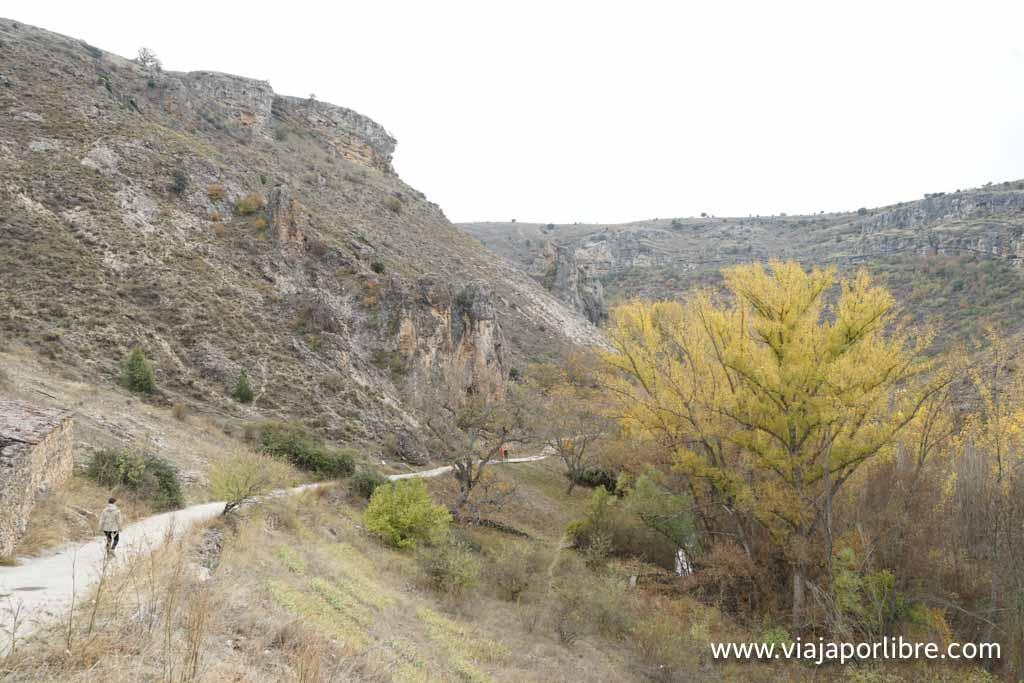 Bajando al barranco desde Pelegrina