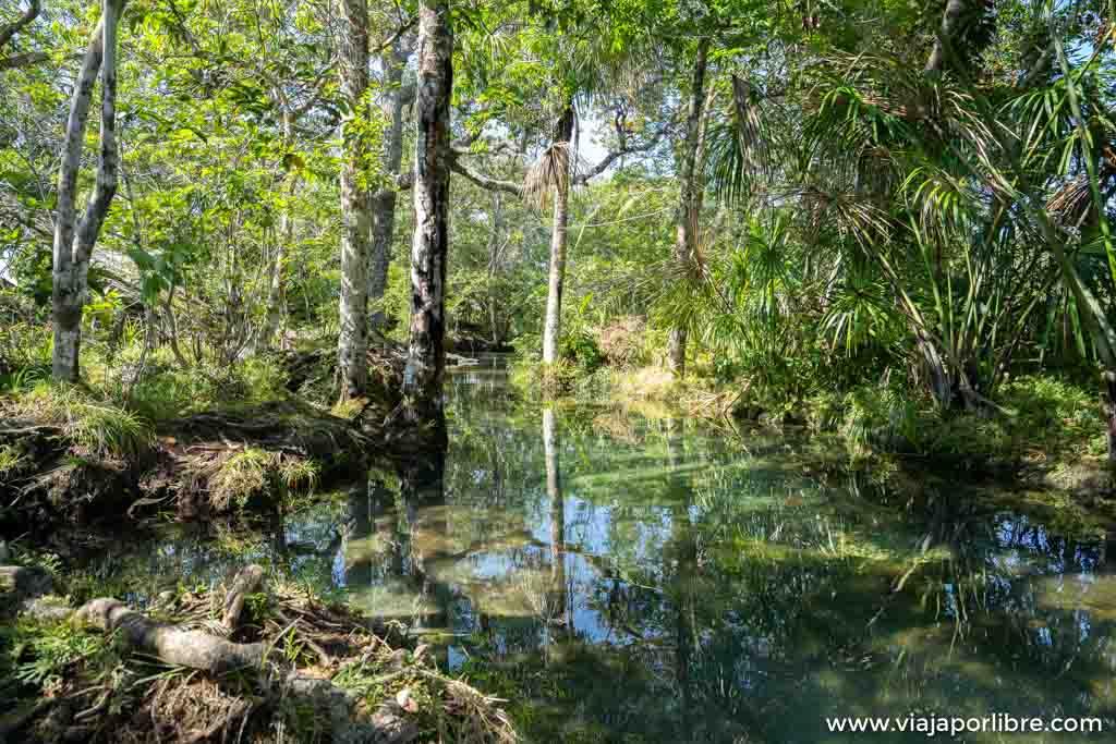 Viaje a Caño Cristales, el río mas bonito del mundo