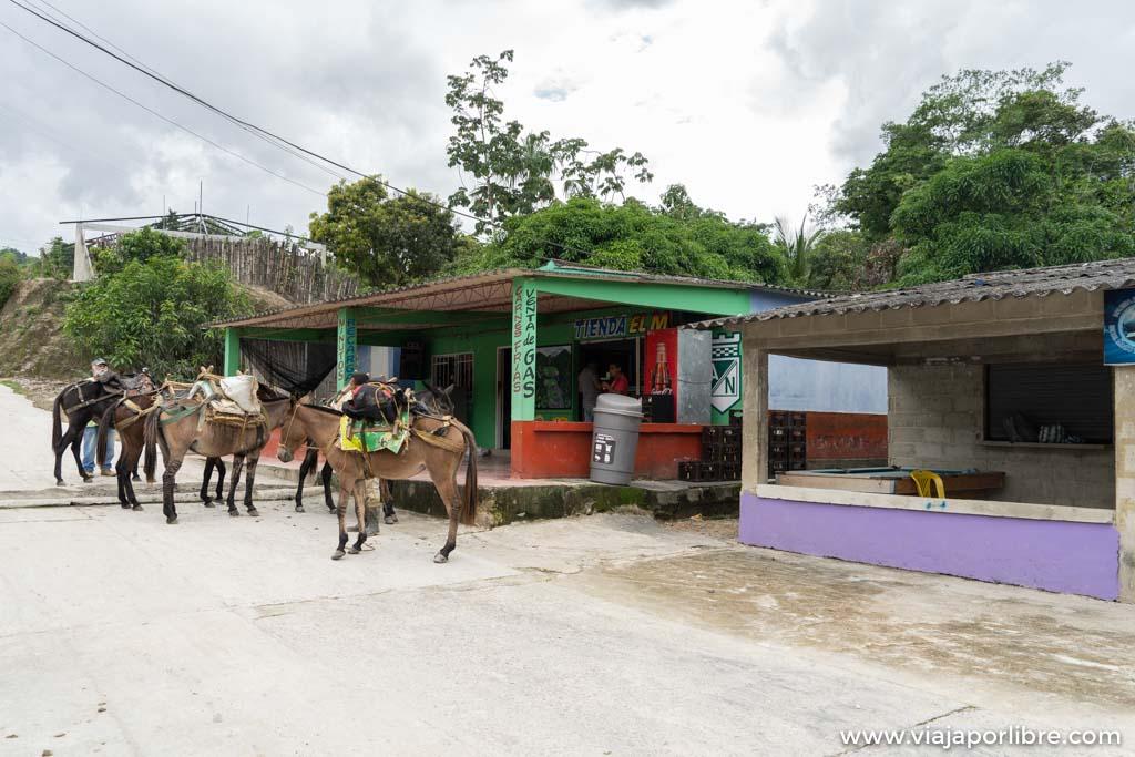 Ruta a la Ciudad Perdida de Colombia