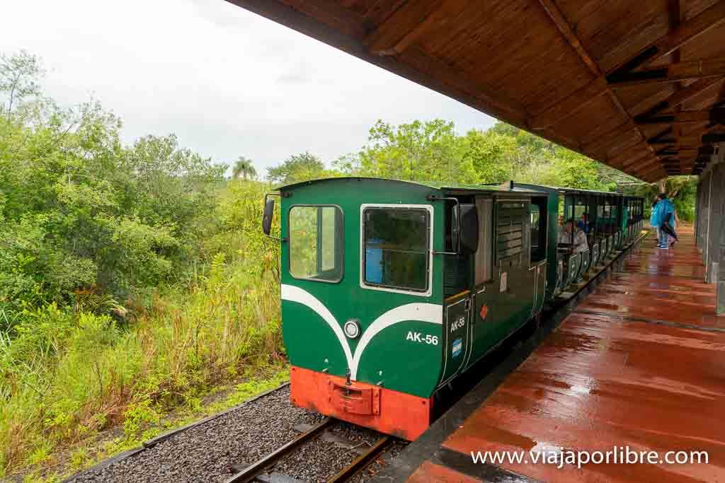 Tren en las Cataratas del Iguazú