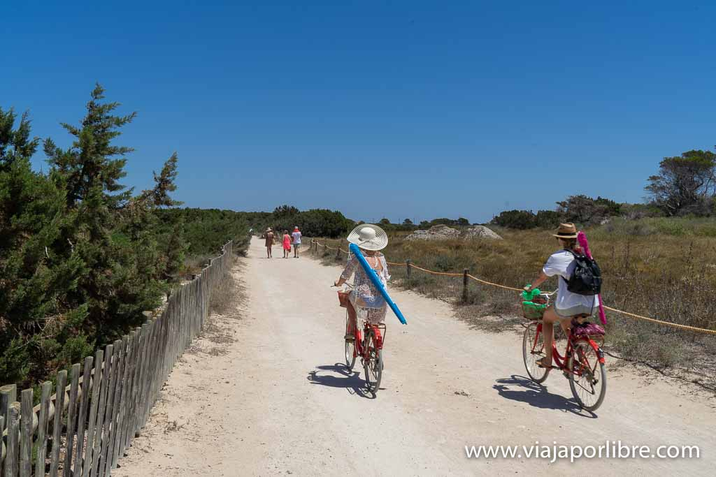 De camino a la playa