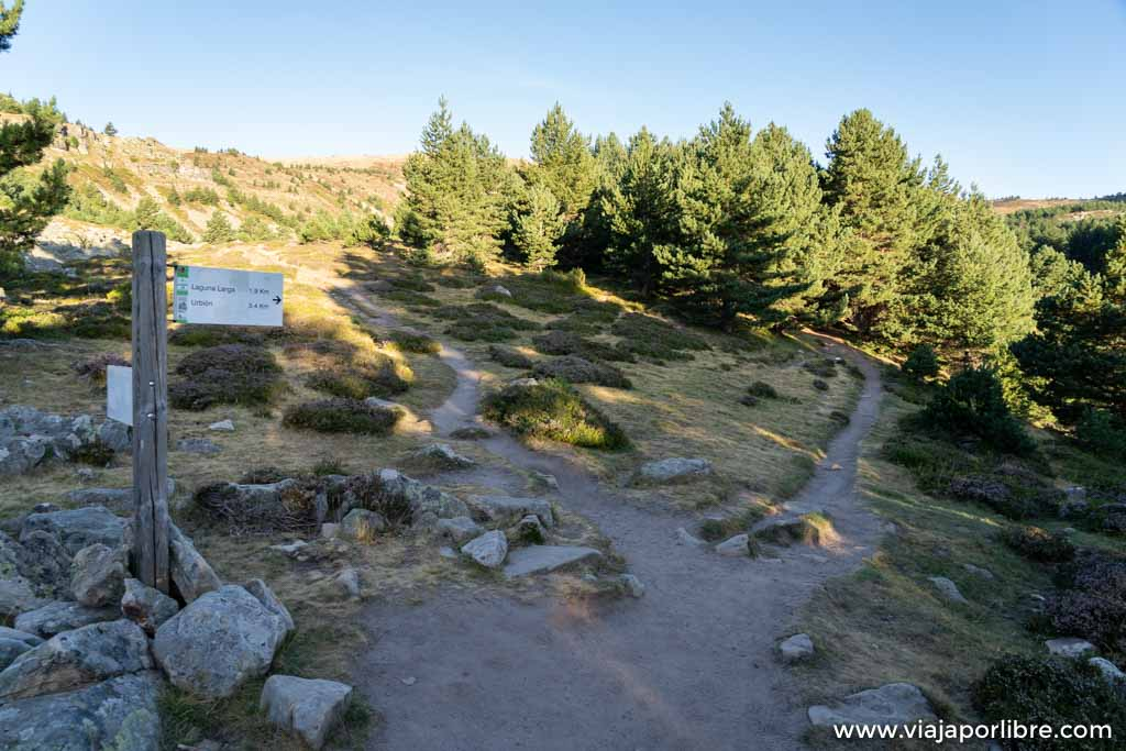Ruta al pico de Urbión