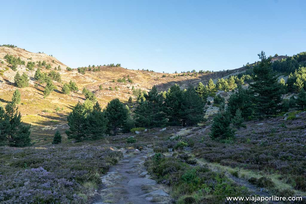 Ruta al pico de Urbión desde la Laguna negra (Soria)