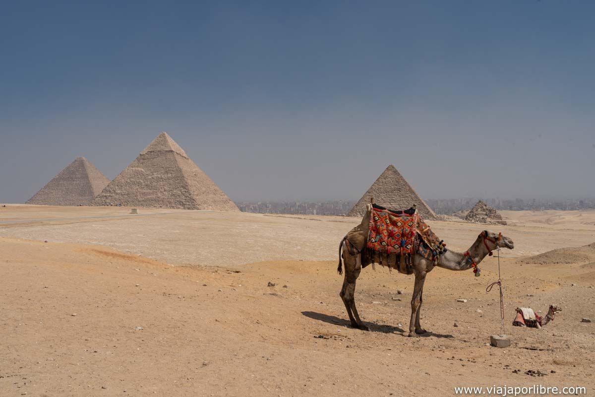 Mirador de las Pirámides de Giza
