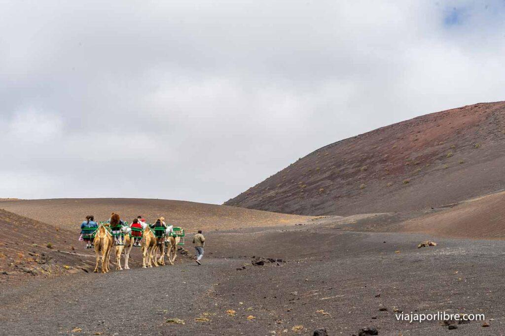 Senda de los camellos