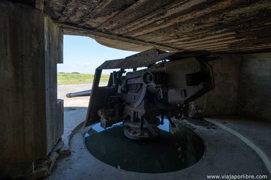 Interior de la batería